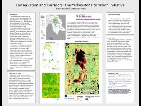 Conservation & Corridors: the Yellowstone to Yukon Initiative