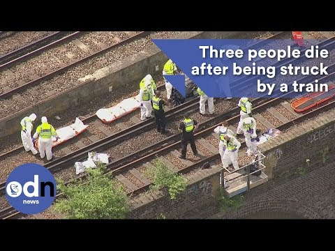 Three people die after being struck by a  train