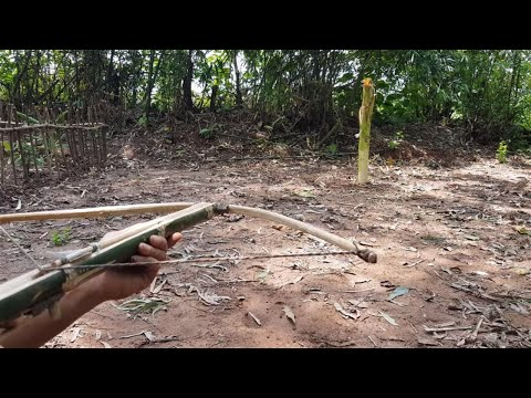 Primitive technology: Creating a primitive crossbow – hunting – ep 16