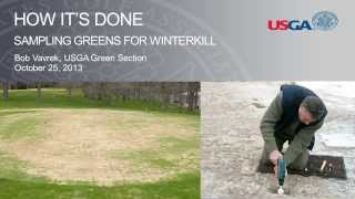 How It's Done: Sampling Greens for Winterkill