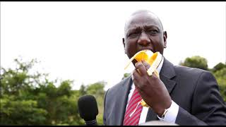 So Close Yet So Far: Why DP Ruto Urgently Needs A New Strategy