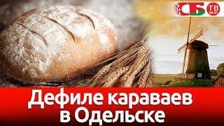Открытие праздника мельников и дефиле караваев в Одельске - СТРИМ