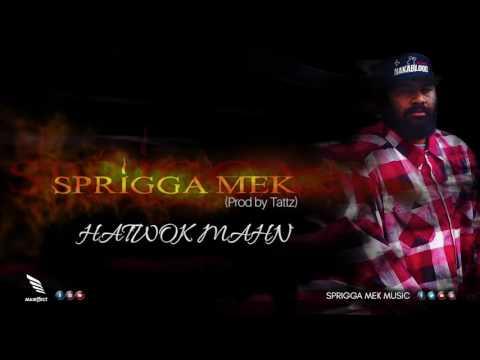 Sprigga Mek - HATWOK MAHN (Prod by Tattz) 2017