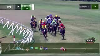 Vidéo de la course PMU PREMIO FEBO APOLO