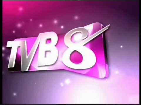 2010 TVB8新台标 【15sec】