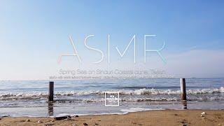 봄 | 서해 | 충남 태안 신두리 해안사구 해변 ✦ 꿈…