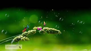 Relax Music for Children 🎵Study Music, Soothing Relaxation, Sleepy Music, Let Go of Stress