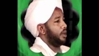 الشيخ الزين محمد احمد سورة الرعد الي طه