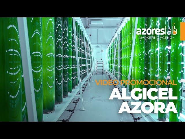 ALGICEL - vídeo promocional