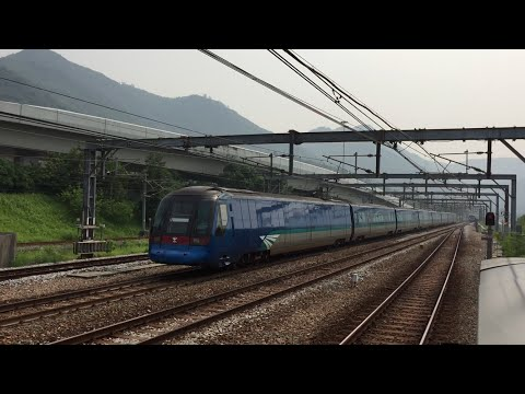 MTR HD 60fps: Tung Chung Line & Airport Express Line Action @ Sunny Bay Station 9/26/16