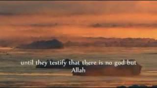 hadith 8 42 an nawawi 40 hadith by saad al ghamdi