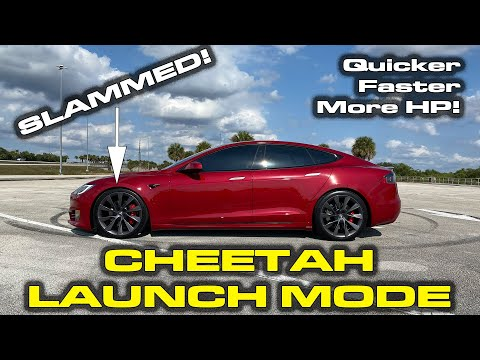 FIRST TEST * Cheetah Launch Mode Testing & Dash Cam Viewer Demonstration * Tesla Model S Performance