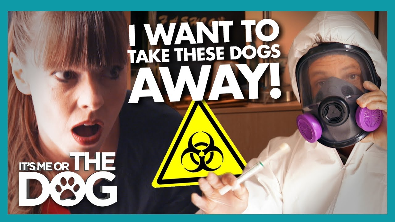 """Worst Dog Owner Ever' Has Victoria Threatening to Take Pets Away 