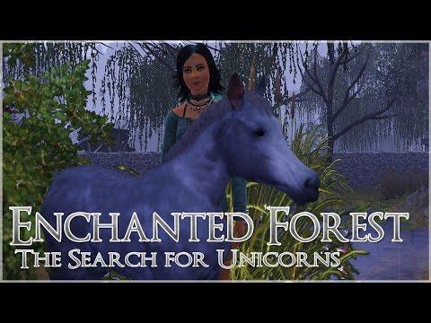 Stumbling on an Abandoned Foal?! • Unicorn Challenge - Episode #1