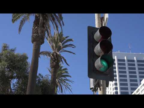 Royalty Free - Santa Monica Streetlights with Palm Trees Ocean Ave - Free Stock Footage