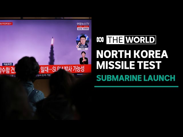 North Korea fires suspected submarine-launched missile into waters off Japan | The World