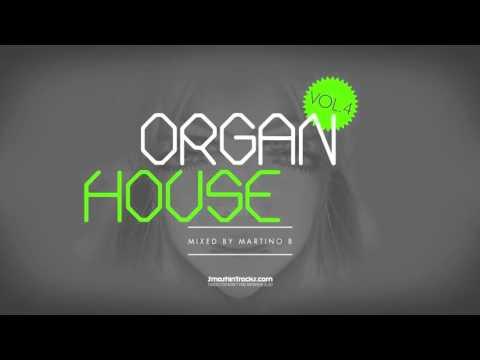 Martino B ● Organ House v004 (December 2015)
