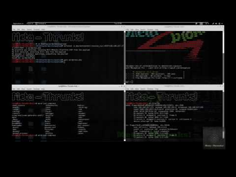 WP-Exploit Framework - Admin shell upload + Metasploit - Meta-Thrunks!