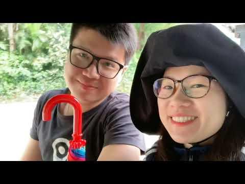 廣州長隆動物園之旅(Day2)/坐小火車纜車遊園/空中熊貓/白虎尿尿/樹熊爬樹