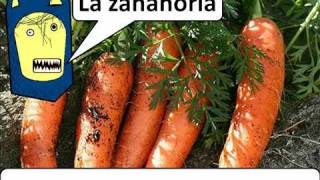 Handy Food Vocab 4 - Veg