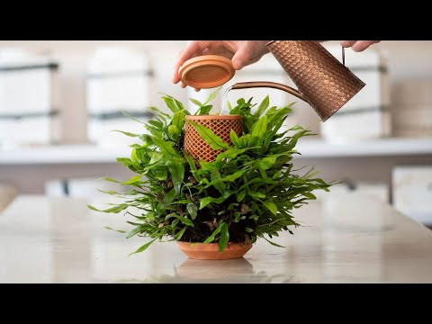 terraplanter - the inside out planter