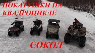 Тестдрайв квадроцикла  Сокол, покатушки по снегу на Сокол, Стелс, Ниссамаран, РМ650/ИванTrotiL