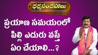 Gambar cover ప్రయాణసమయంలో పిల్లి ఎదురుగా వస్తే ఏం చేయాలి   Dharma Sandehalu   Pilli Eduru Vaste   Pooja TV Telugu