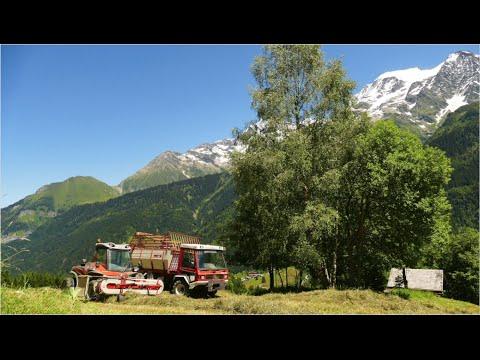 Les foins en montagne aux Contamines Montjoie, GAEC Sabotdance, ©Jacquemoud Charly