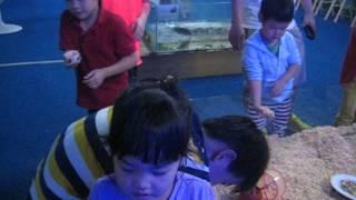 오빠와 초하, 파충류 박물관에서
