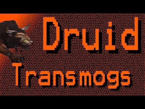 Top 5 Druid Transmogs
