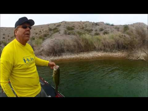 Fishing lake mohave catching large smallmouth bass for Lake mohave fishing report