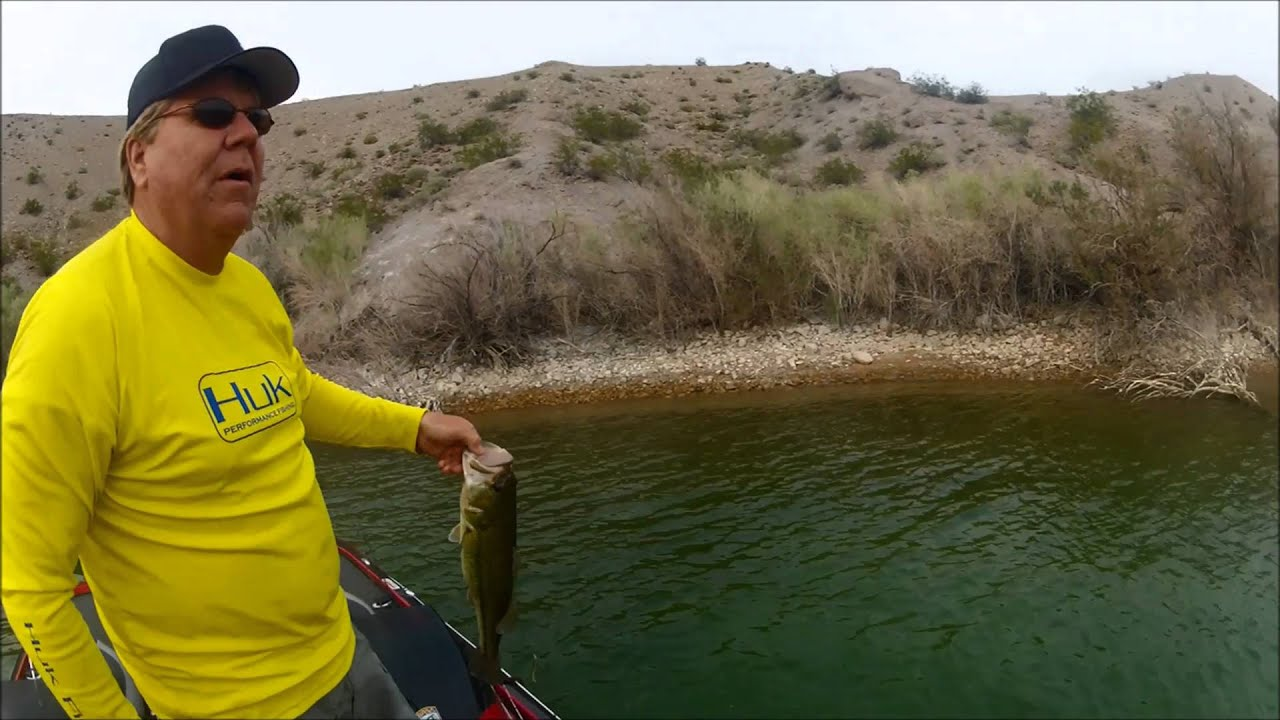 Fishing lake mohave catching large smallmouth bass for Lake mohave fishing