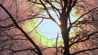 Laisse entrer le soleil-Philippe Bray-