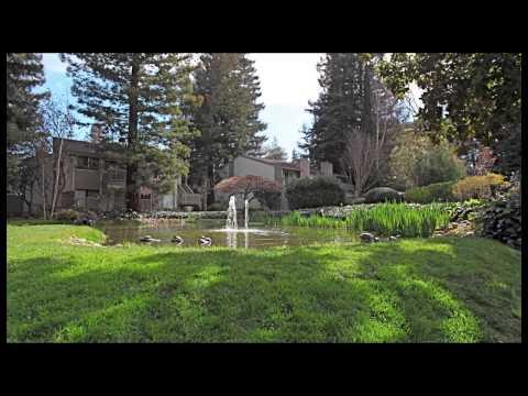 19223 Vineyard Lane, Saratoga, CA      FOR SALE 525k