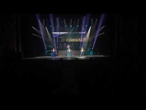 Celtic  woman live with the opening song of the show