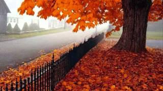 willie nelson autunn leaves