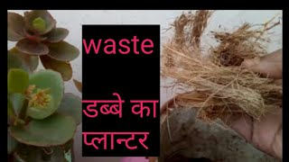 How to grow n care  hanging plants in waste pots in (Hindi & Urdu)