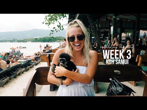 TRAVELLING THAILAND // KOH SAMUI // WEEK 3