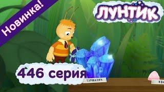 Лунтик - 446 серия. Коллекционеры. Мультфильмы 2015