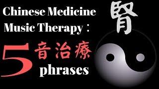【中醫音樂】music therapy in chinese medicine :漢宮秋月 2019  中醫養生音樂 五音治療 中醫五行