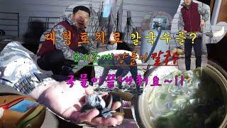 대형 토치 모시조개 양…