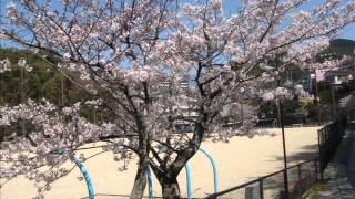 平成24年の鳴滝高校.wmv