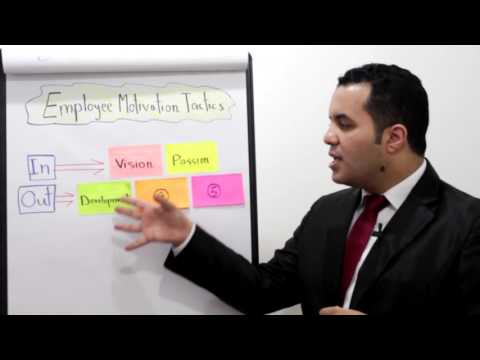 Employee Motivation: 5 Tactics that Works - Ahmed Magdy