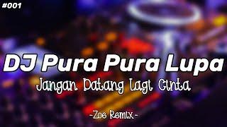 Download DJ PURA PURA LUPA VIRAL TIKTOK [MAHEN] - BANG ZOE RMX