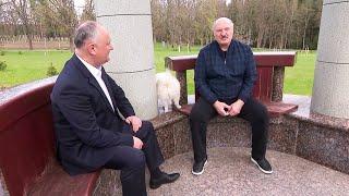Лукашенко: Ты читал про моё золотое дно и дворцы? Думаю, тебе покажу! // Дома у Президента