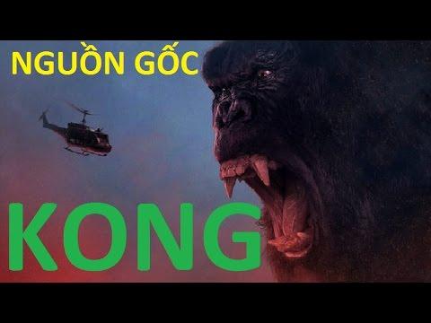 [KHÁM PHÁ] Đi tìm nguồn gốc King Kong, Liệu King Kong có thật?