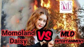 Momoland Daisy vs Mld Entertainment