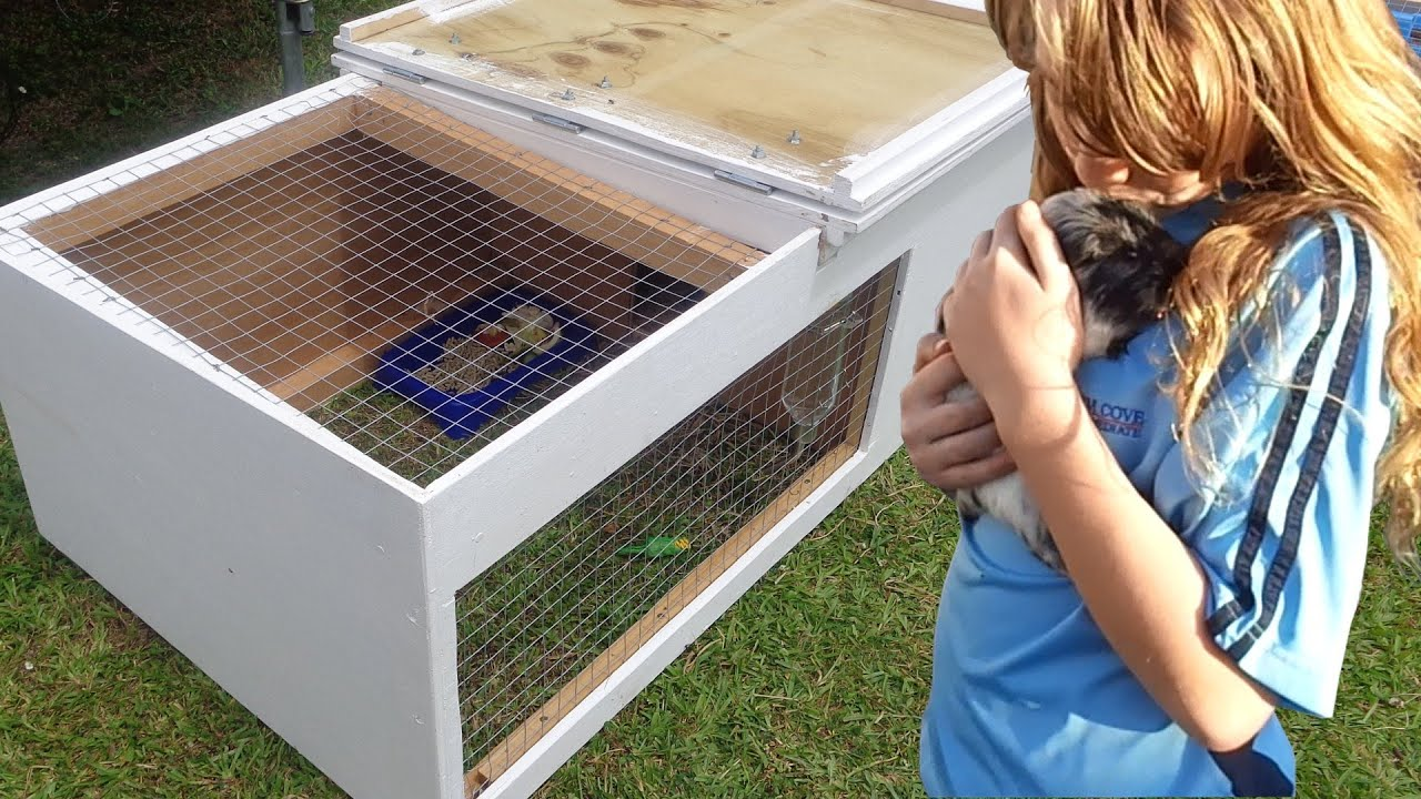 How to build a guinea pig hutch youtube for Diy guinea pig hutch
