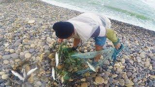 Gran Pescador Pesca Lisas Grandes con Atarraya  【%100 de Acción】