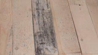 видео Обработка древесины от гниения